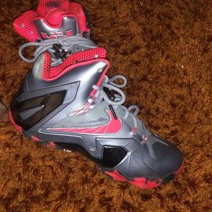 LEBRON JAMES LIMITED EDITION